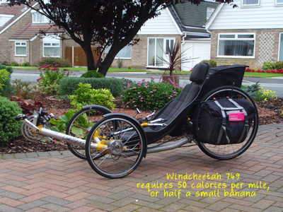 Windcheetah 749