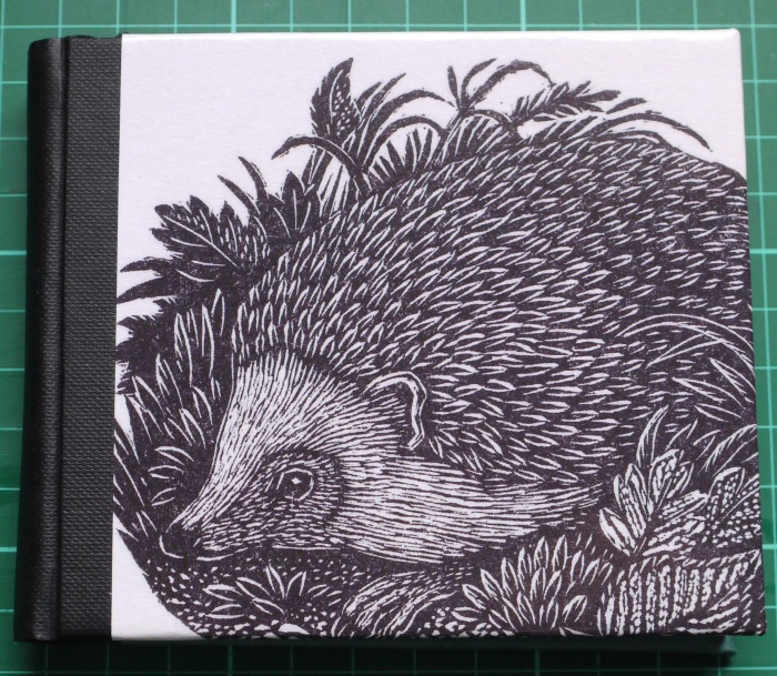 63_02_Hedgehog