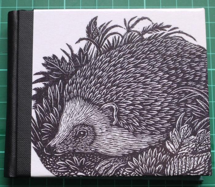 63_02_Hedgehog